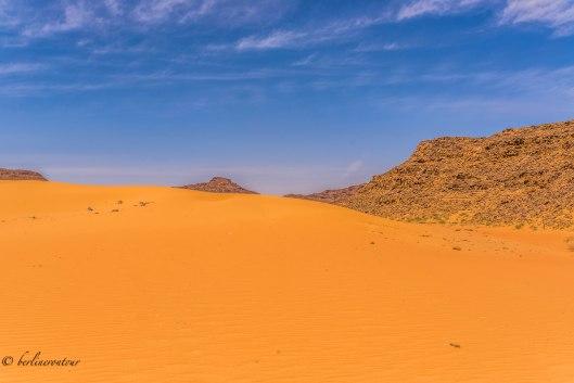 Wadi Rum_303