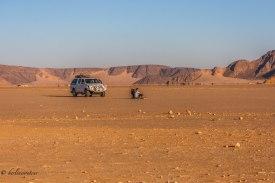 Wadi Rum_310