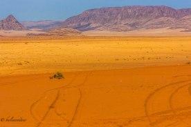 Wadi Rum_319