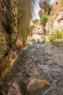 Wadi Bin Hammad