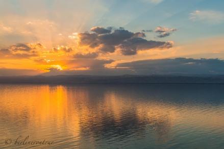 Dead Sea__0069