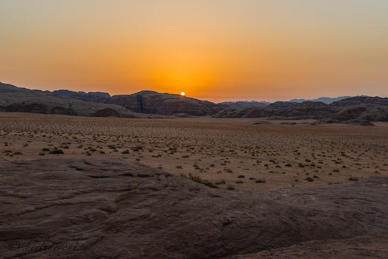Wadi Rum__1161