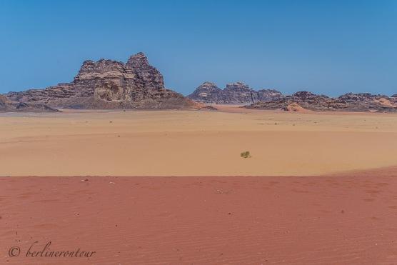 Wadi Rum__1224