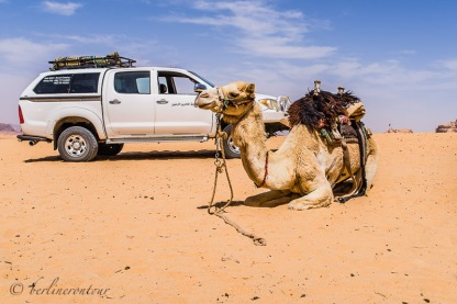 Wadi Rum__202